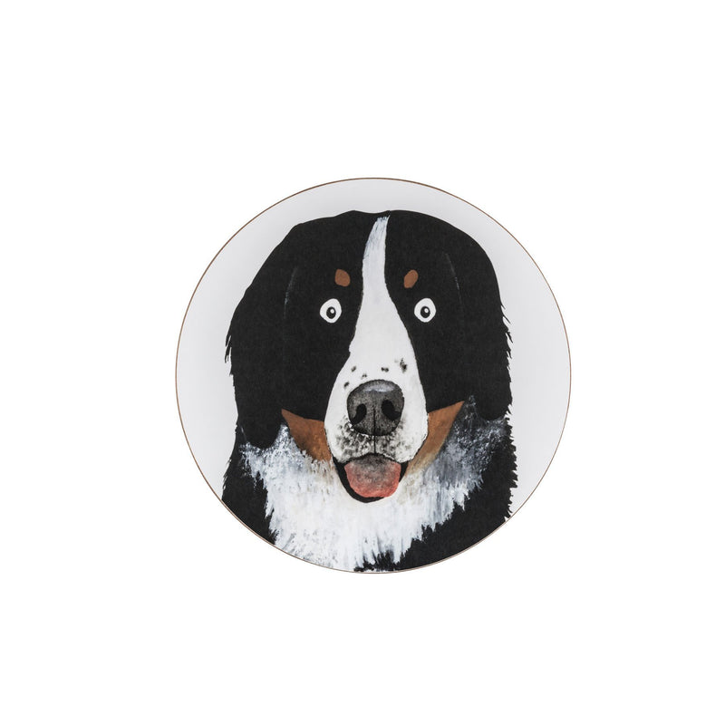 Rodger The Dog Coaster