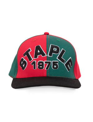 Arc Snapback Cap - Hat | Staple Pigeon