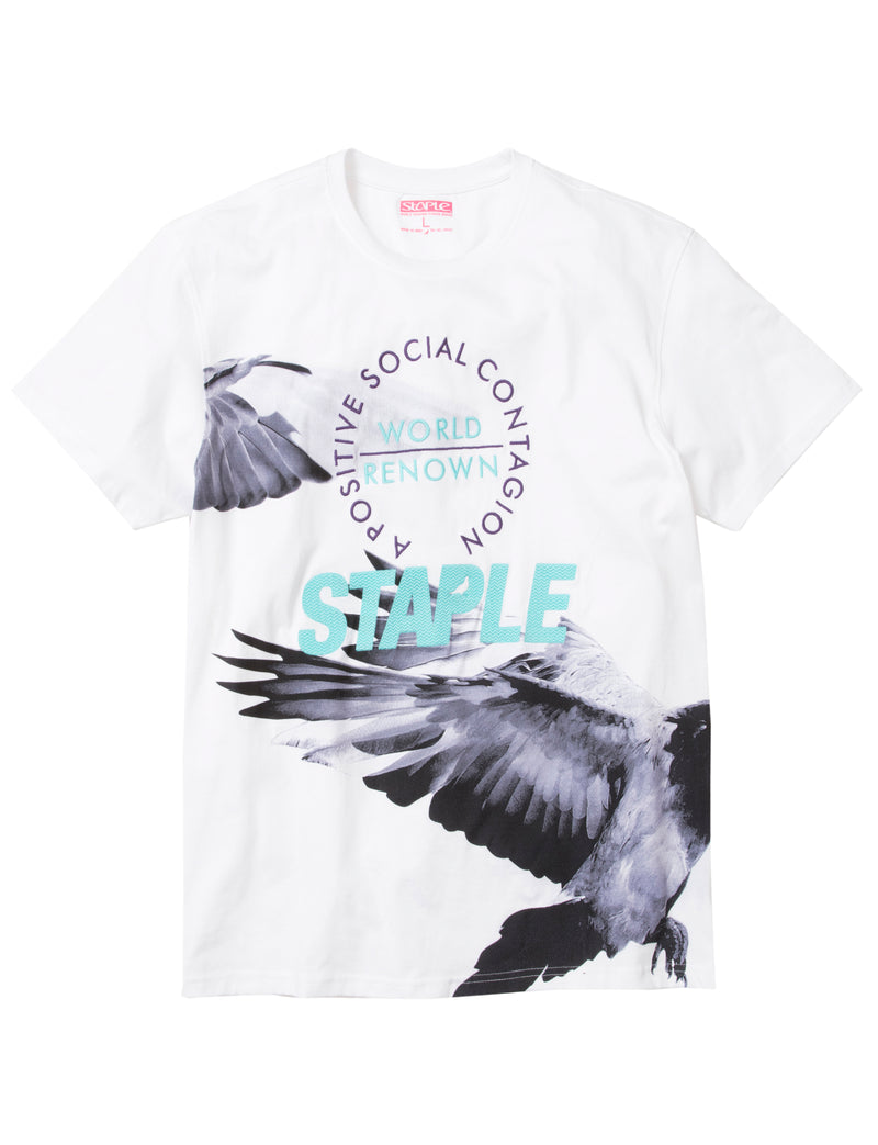 Wings Tee - Tee | Staple Pigeon
