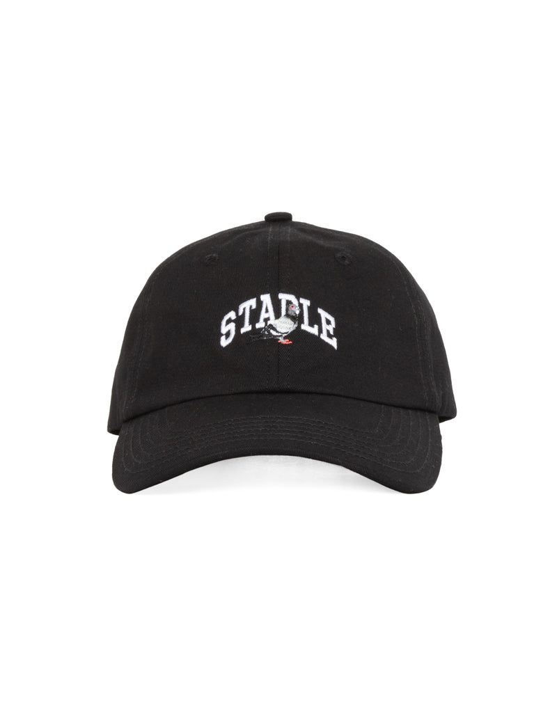 Collegiate Pigeon Dad Cap - Hat | Staple Pigeon