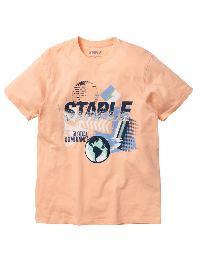 World Paint Graphic Tee - Tee | Staple Pigeon