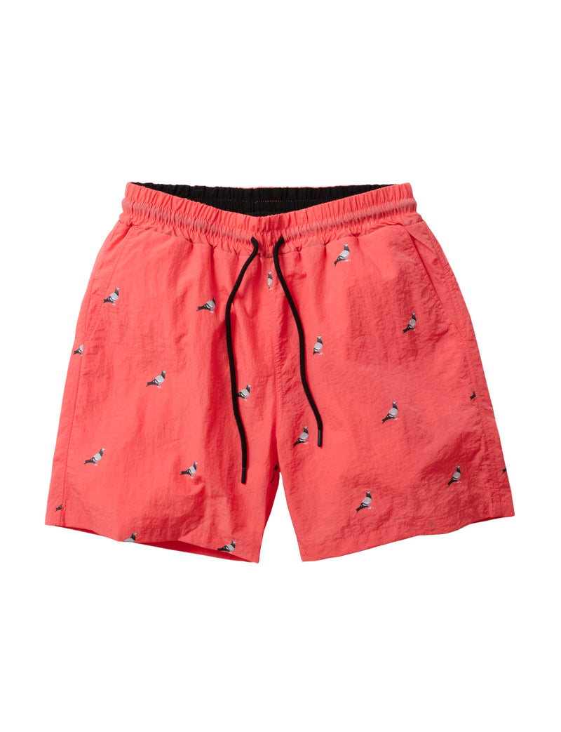 Allover Pigeon Swim Shorts - Shorts | Staple Pigeon