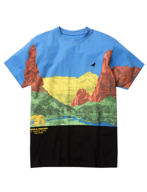 Canyon Tee - Tee | Staple Pigeon