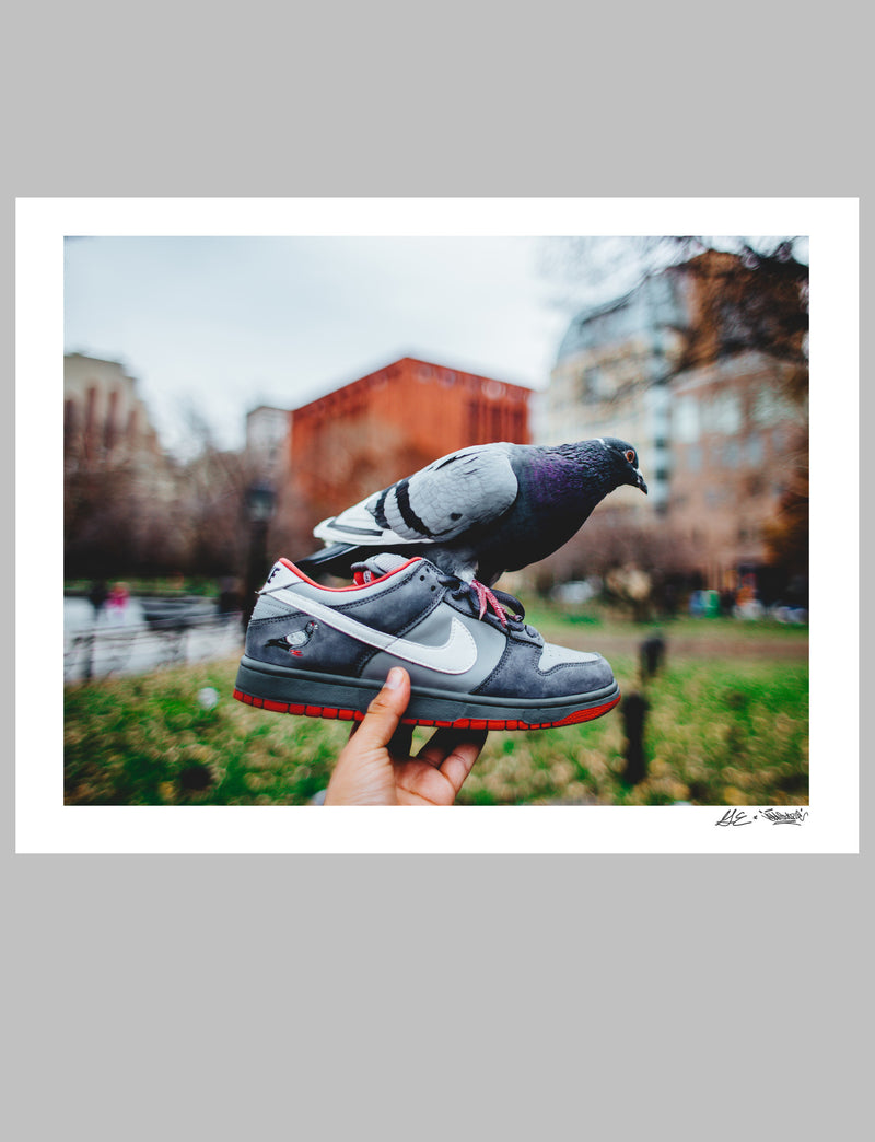 Staple Pigeon Dunk 10th Anniversary Print - Picture | Staple Pigeon