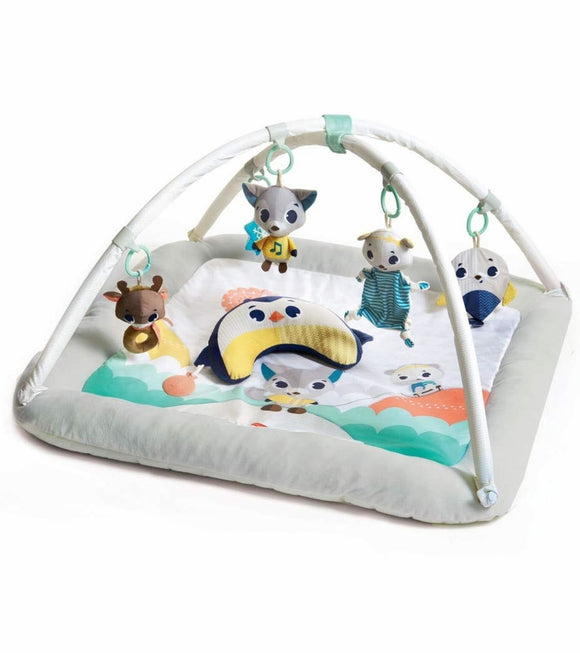 Tiny Love Polar Wonders Plush Gymini Mat