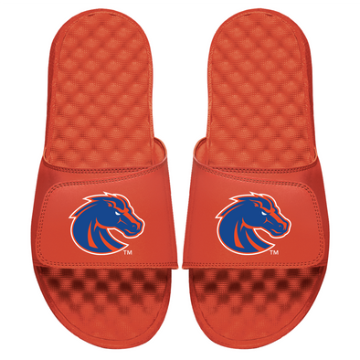 Boise State Primary