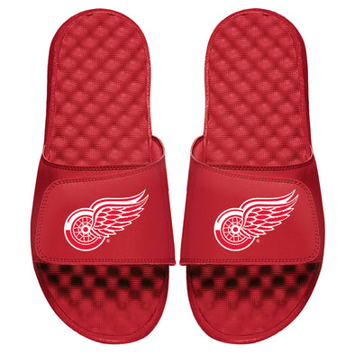 Detroit Red Wings Primary
