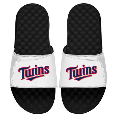 Minnesota Twins Wordmark
