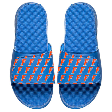 University of Florida Pattern - ISlide