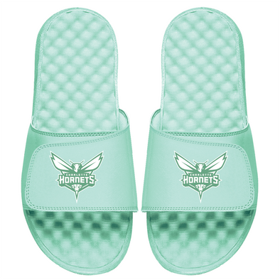Charlotte Hornets Primary Seafoam