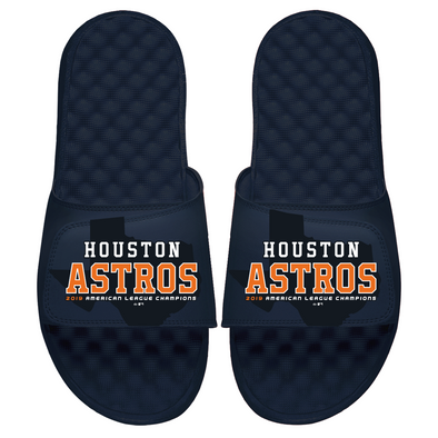 Houston Astros AL Champs 2019