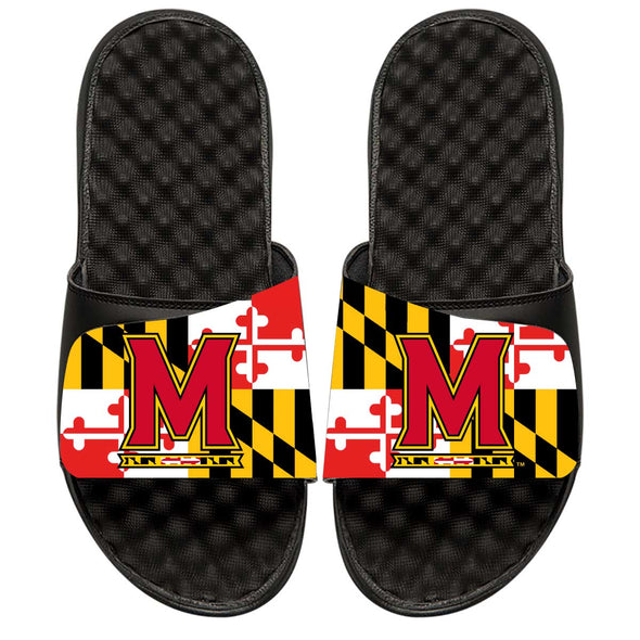 Maryland Flag Primary