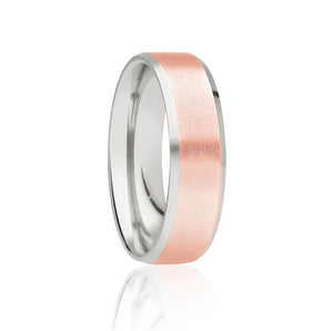 Two Tone Brushed Ring