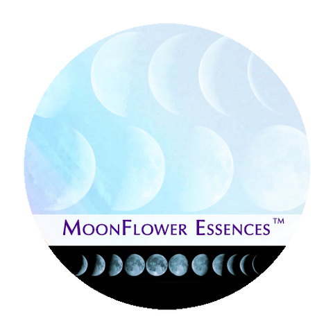 Set of all 8 Moon Combination Essences