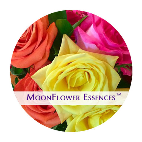 Rose Essences - Set of 5