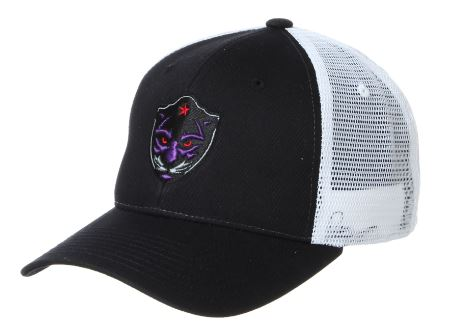 FORT WORTH PANTHERS CUSTOM BIG RIG SNAP BACK (AVAILABLE IN STORE)
