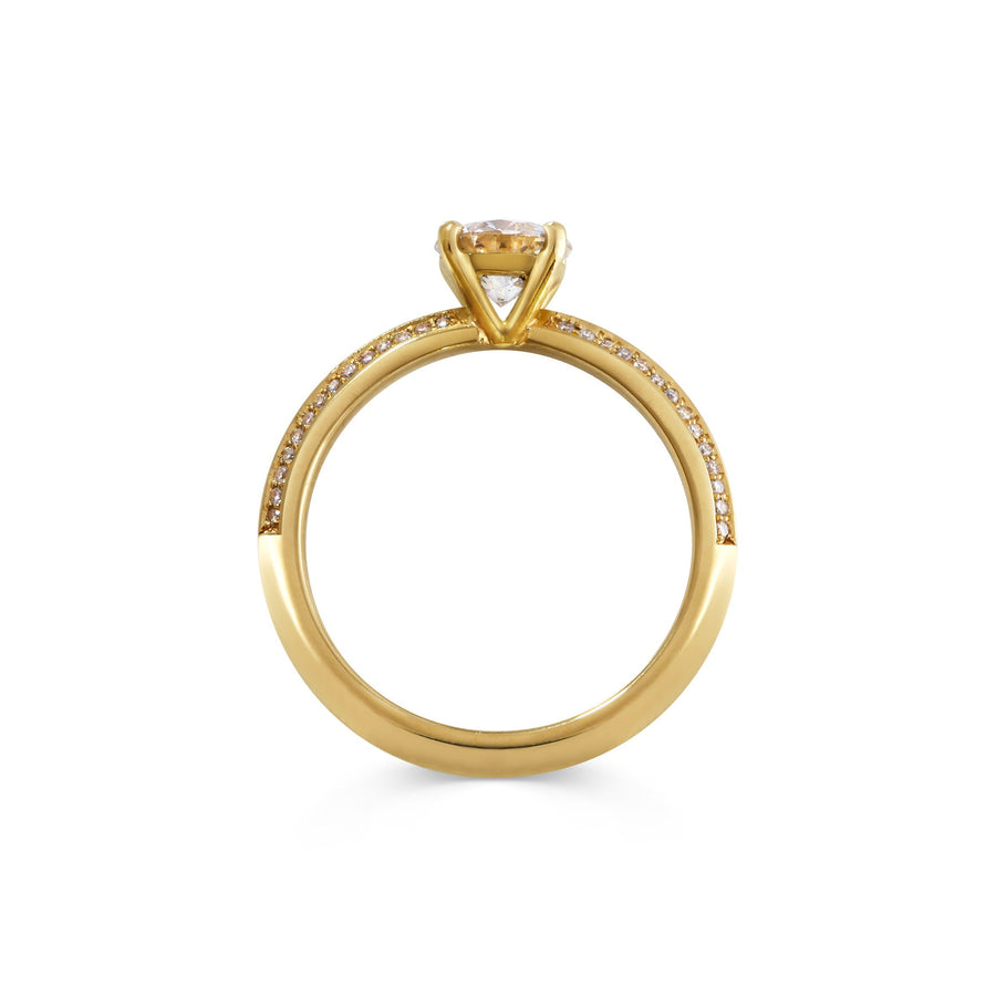 Ursa Major Ring