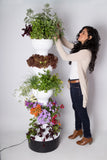 Foody 8 Hydroponic Tower