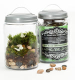 "Moss Terrarium DIY Kit - ""Enchanted Forest"""