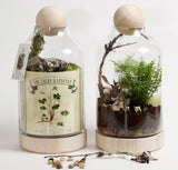 "DIY Terrarium Kit - ""Lucky Gardener"""