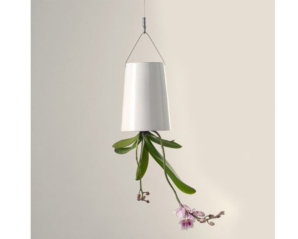 Sky Planter Hanging Garden - Small