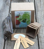 Cilantro - Seeds & Starter Slow Bolt Kit