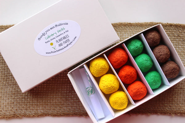 'Candy' Seed Bomb Gift Set - Culinary Herbs