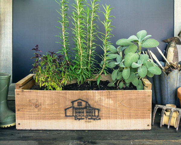 Herb Kits Wooden Planter Box Indoorherbkits Com