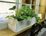 Herb Kit Planter Box - Shabby Chic
