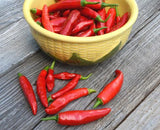 Chile Pepper Starter Kit