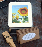 Heirloom Sunflowers - Seed & Starter Kit