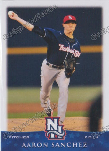 2014 New Hampshire Fisher Cats Team Set