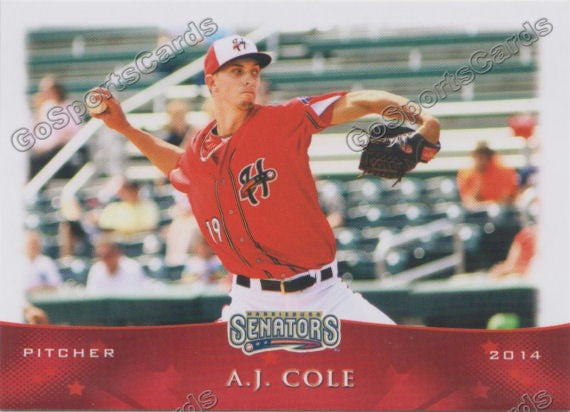 2014 Harrisburg Senators Team Set
