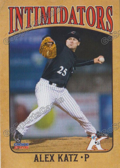 2016 Kannapolis Intimidators Team Set