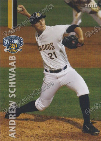 2016 Charleston Riverdogs Team Set