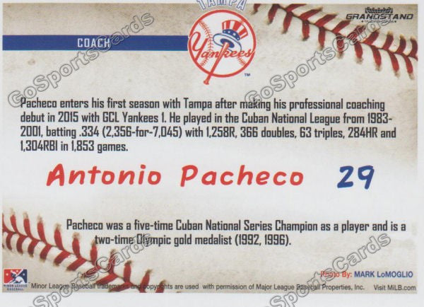 2016 Tampa Yankees Antonio Pacheco Back of Card
