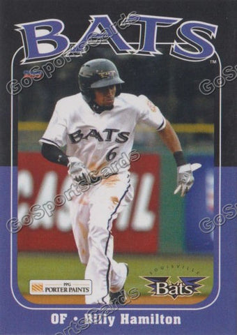 2013 Louisville Bats Team Set