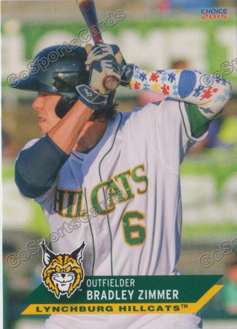 2015 Lynchburg Hillcats Team Set