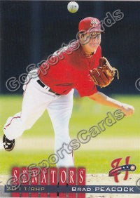 2011 Harrisburg Senators Team Set