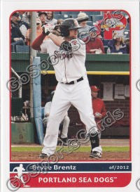 2012 Portland Sea Dogs Team Set