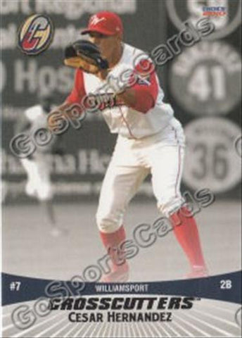 2010 Williamsport Crosscutters Team Set