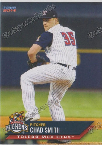 2014 Toledo Mud Hens Team Set