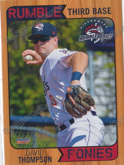 2017 Binghamton Rumble Ponies David Thompson