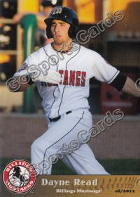 2011 Billings Mustangs Dayne Read