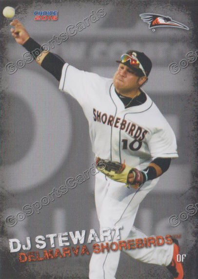 2016 Delmarva Shorebirds Dj Stewart