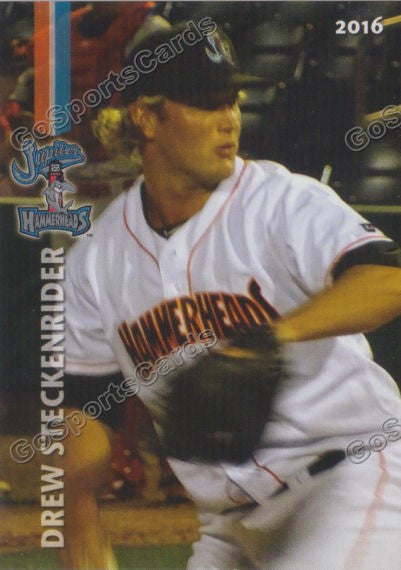 2016 Jupiter Hammerheads Team Set
