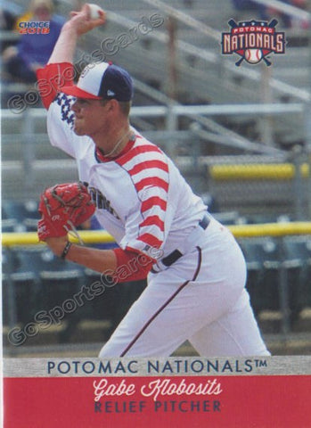 2018 Potomac Nationals Gabe Klobosits