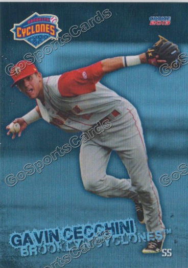 2013 Brooklyn Cyclones Team Set
