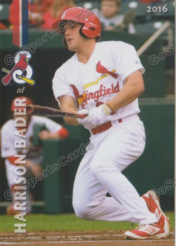 2016 Springfield Cardinals Team Set