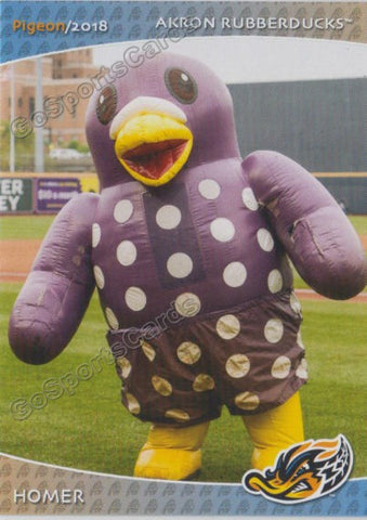 2018 Akron Rubber Ducks Homer Mascot